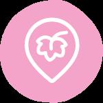 icon-active